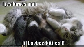 I jes lurves mah                       lil baybee-kitties!!!