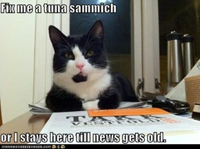 Fix me a tuna sammich  or I stays here till news gets old.