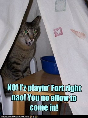 NO! I'z playin' Fort right nao! You no allow to come in!