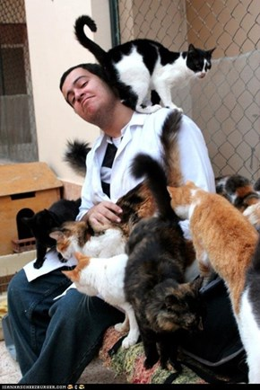 O, the Places You'll Go: Animal Haven Shelter in Shabramant, Egypt