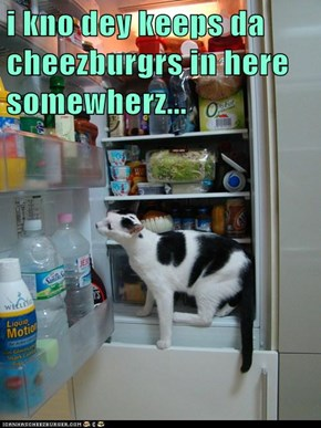 i kno dey keeps da cheezburgrs in here somewherz...