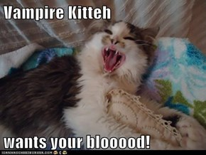 Vampire Kitteh  wants your blooood!