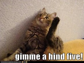 gimme a hind five!