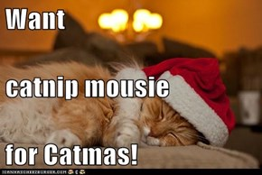 Want   catnip mousie for Catmas!