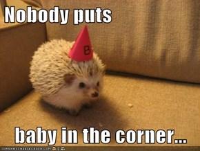 Nobody puts  baby in the corner...