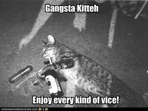 Gangsta Kitteh