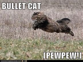 BULLET CAT  (PEWPEW!)