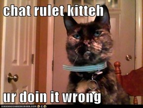 chat rulet kitteh  ur doin it wrong