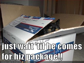 just wait 'til he comes for hiz package!!