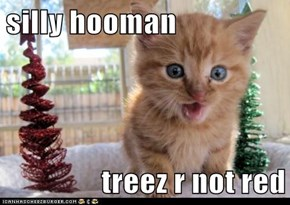 silly hooman  treez r not red