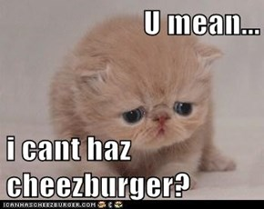 U mean...  i cant haz cheezburger?