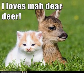 I loves mah dear deer!