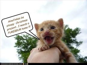 Ainofinkso be stoopy  Christmas prezent.. I needz a FUREBBUR home !!!