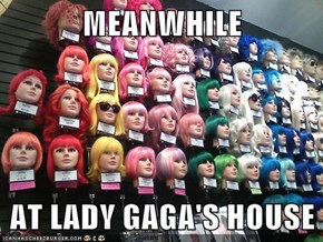 MEANWHILE  AT LADY GAGA'S HOUSE
