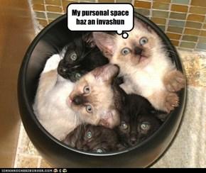 My pursonal space