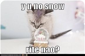 y u no snow   rite nao?