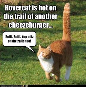 Burger euphoria. Ai haz it!
