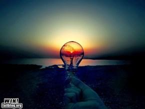 Light Bulb WIN