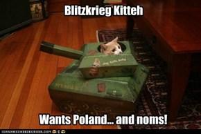 Blitzkrieg Kitteh