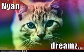 Nyan  dreamz...