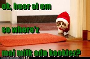 ok, heer ai em so where'z mai milk adn kookiez?