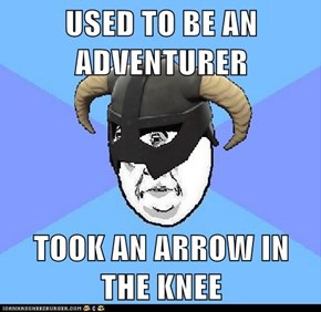 USED TO BE AN ADVENTURER  TOOK AN ARROW IN THE KNEE