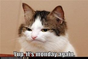 Yup, it's monday again.