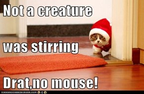 Not a creature was stirring Drat,no mouse!