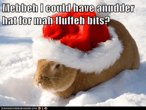 Mebbeh I could have anudder hat for mah fluffeh bits?