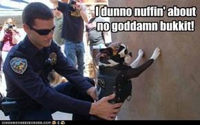 I dunno nuffin' about no goddamn bukkit!