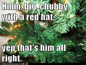 Hmm, big, chubby, with a red hat,  yep that's him all right.