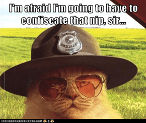 I'm afraid I'm going to have to confiscate that nip, sir...