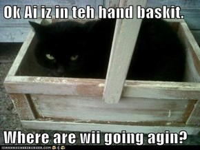 Ok Ai iz in teh hand baskit.  Where are wii going agin?