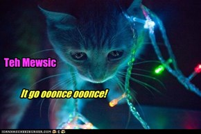 Kitteh's First Rave
