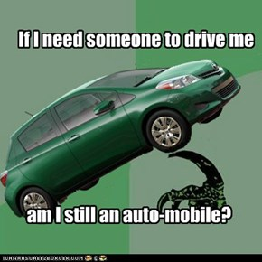 If I need someone to drive me