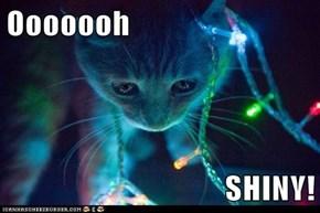 Ooooooh  SHINY!