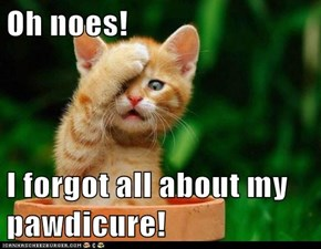 Oh noes!  I forgot all about my pawdicure!