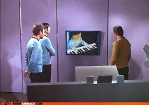 Play Him Off, Spock!
