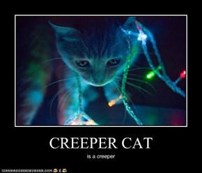 CREEPER CAT
