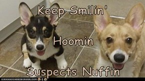 Keep Smilin' Hoomin Suspects Nuffin