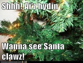 Shhh! Ai'z hydin  Wanna see Santa clawz!