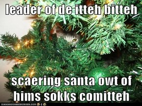 leader of de itteh bitteh  scaering santa owt of hims sokks comitteh