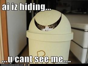 ai iz hiding...  ...u cant see me....