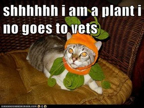 shhhhhh i am a plant i no goes to vets