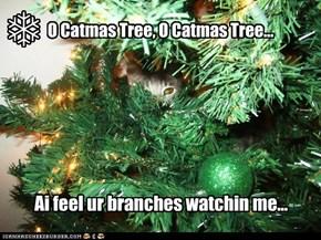 O Catmas Tree, O Catmas Tree...