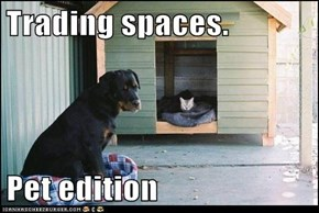 Trading spaces.   Pet edition