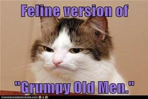 Feline version