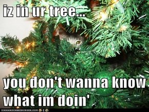 iz in ur tree...  you don't wanna know what im doin'