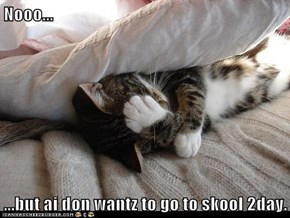 Nooo...  ...but ai don wantz to go to skool 2day.