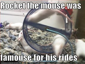 Rocket the mouse was   famouse for his rides